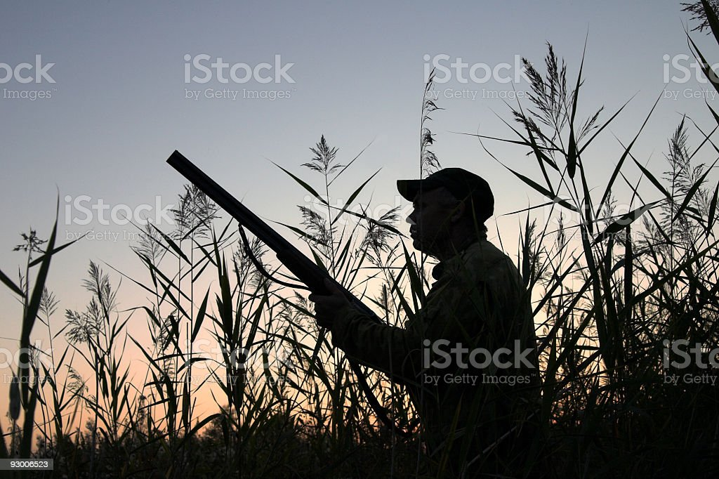 Silhouette of hunter holding gun and preparing to shoot stock photo