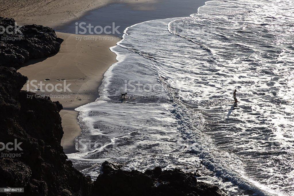 Silhouette of man and dog having fun on seaside. stock photo