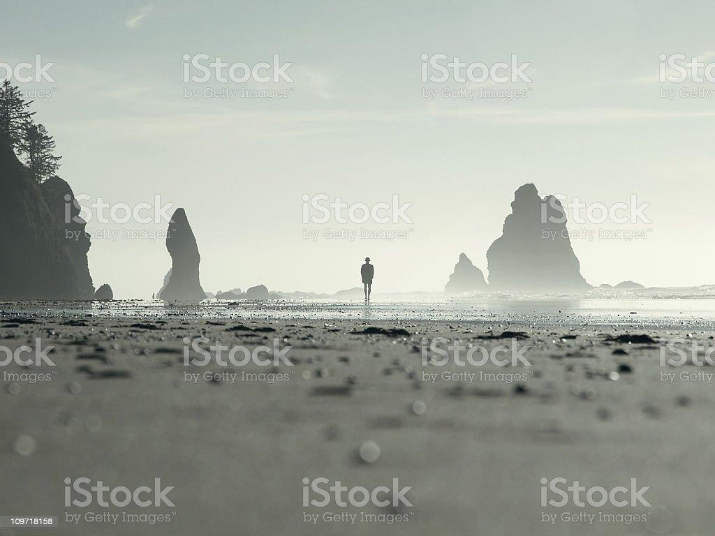 Silhouette of Man Walking on Beach stock photo
