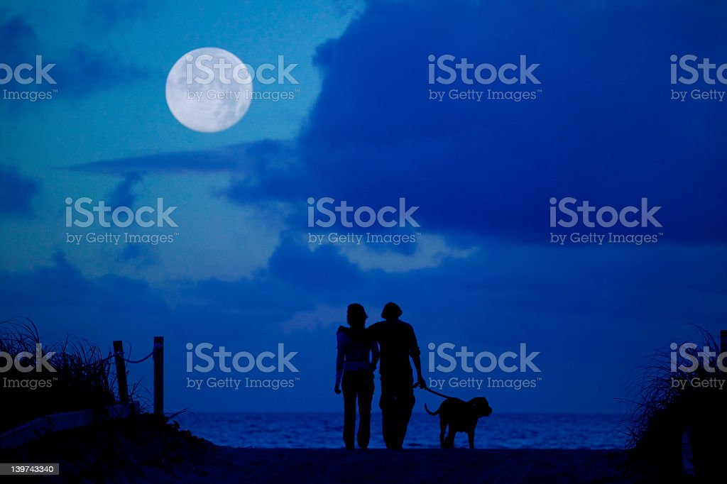 Silhouette of man, woman and dog walking under the moon stock photo