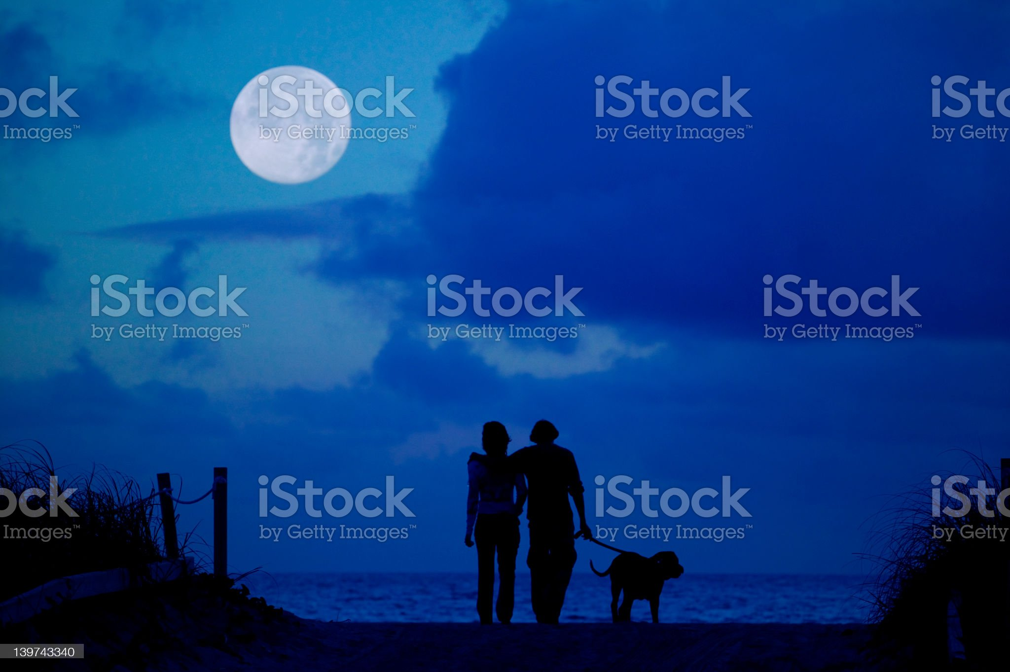 Silhouette of man, woman and dog walking under the moon royalty-free stock photo