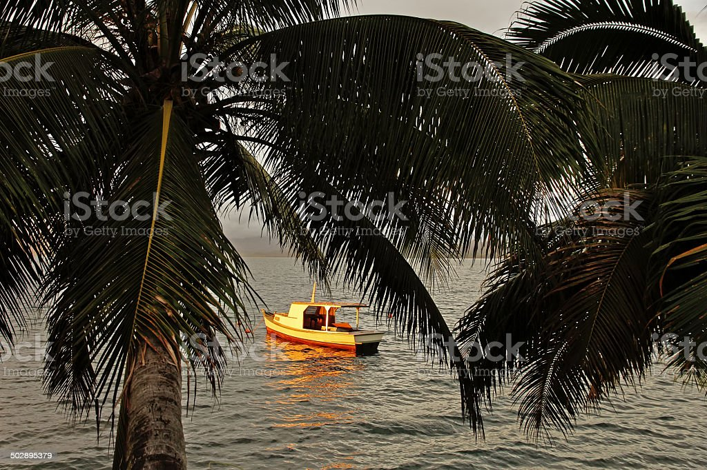 Silhouette of palm trees and a boat at sunset, Savusavu stock photo