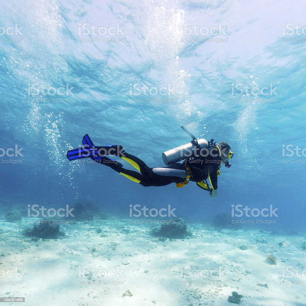 Silhouette of Scuba Diver near Sea Bottom stock photo