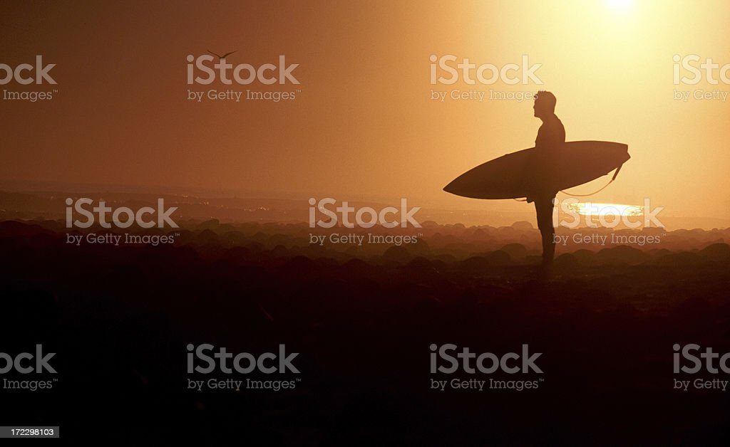 Silhouette of Surfer royalty-free stock photo