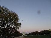silhouette of the washington monument through the trees