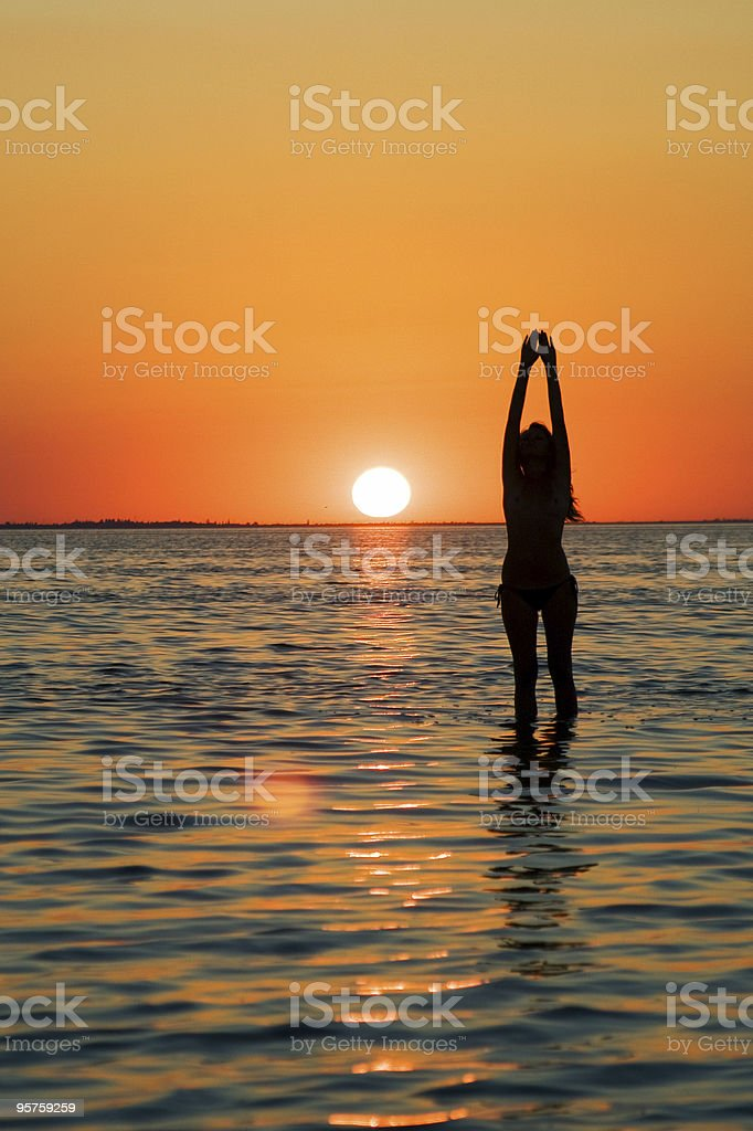 Silhouette of the young woman stock photo