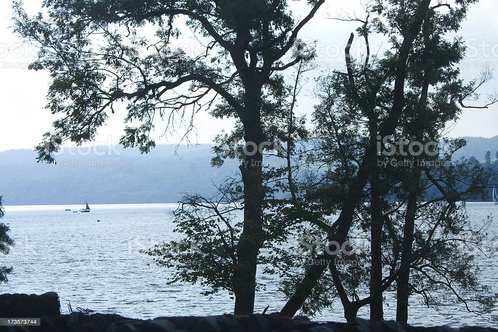 silhouette of trees by lake royalty-free stock photo