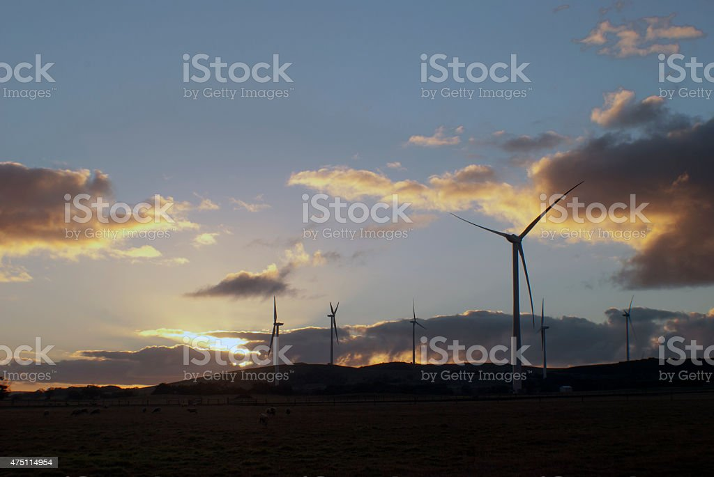silhouette of wind turbines in a field stock photo