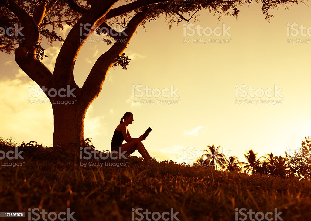 Silhouette of woman reading underneath a tree stock photo