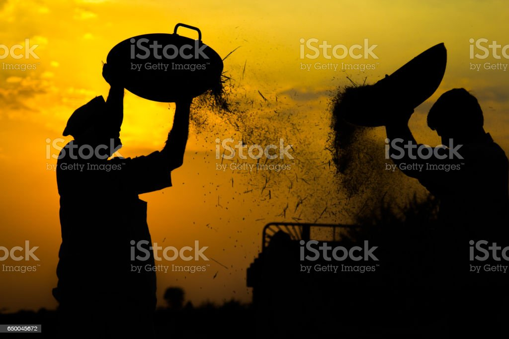 Silhouette of working men during sunset time. stock photo