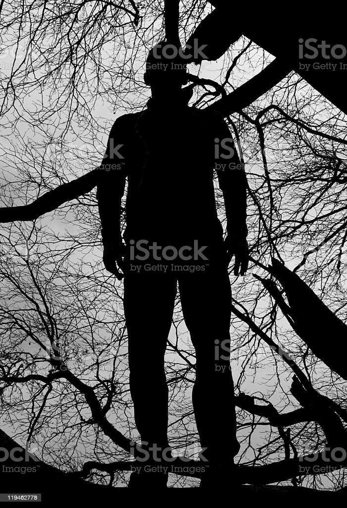 Silhouette stock photo
