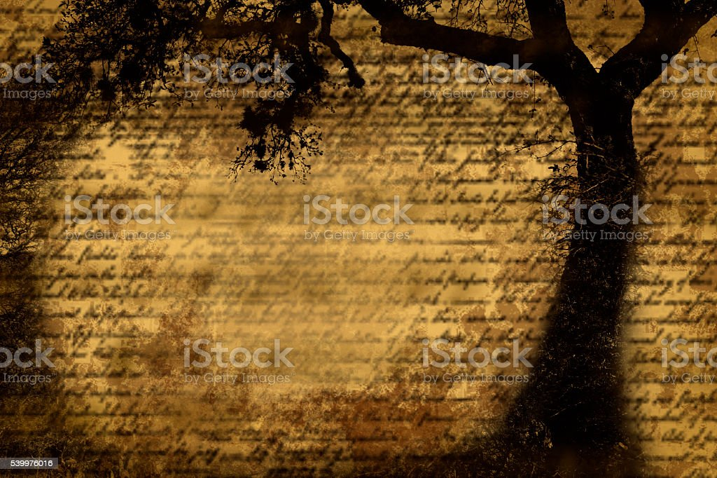 Silhouette tree with grunge, parchment and old script. stock photo