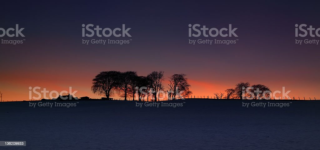 Silhouette trees and house on snowy field stock photo