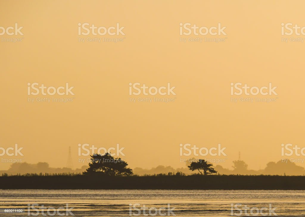 Silhouette Trees Over Water at Sunset stock photo