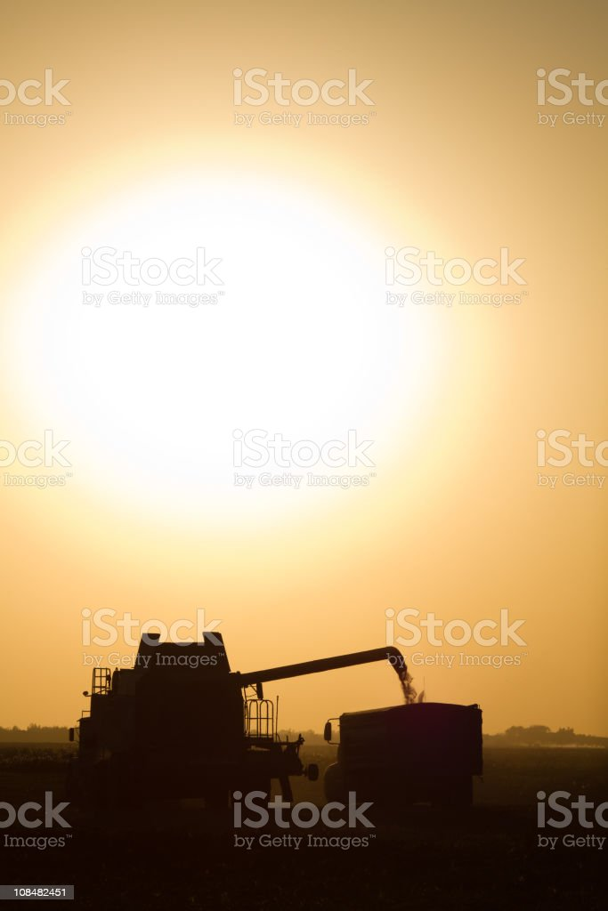 Silhouetted combine and grain truck royalty-free stock photo