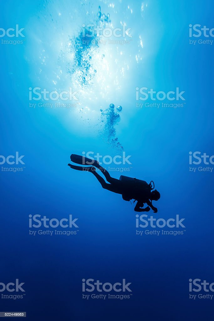 Silhouetted Diver in the Wild Blue Yonder in Clear Sea stock photo