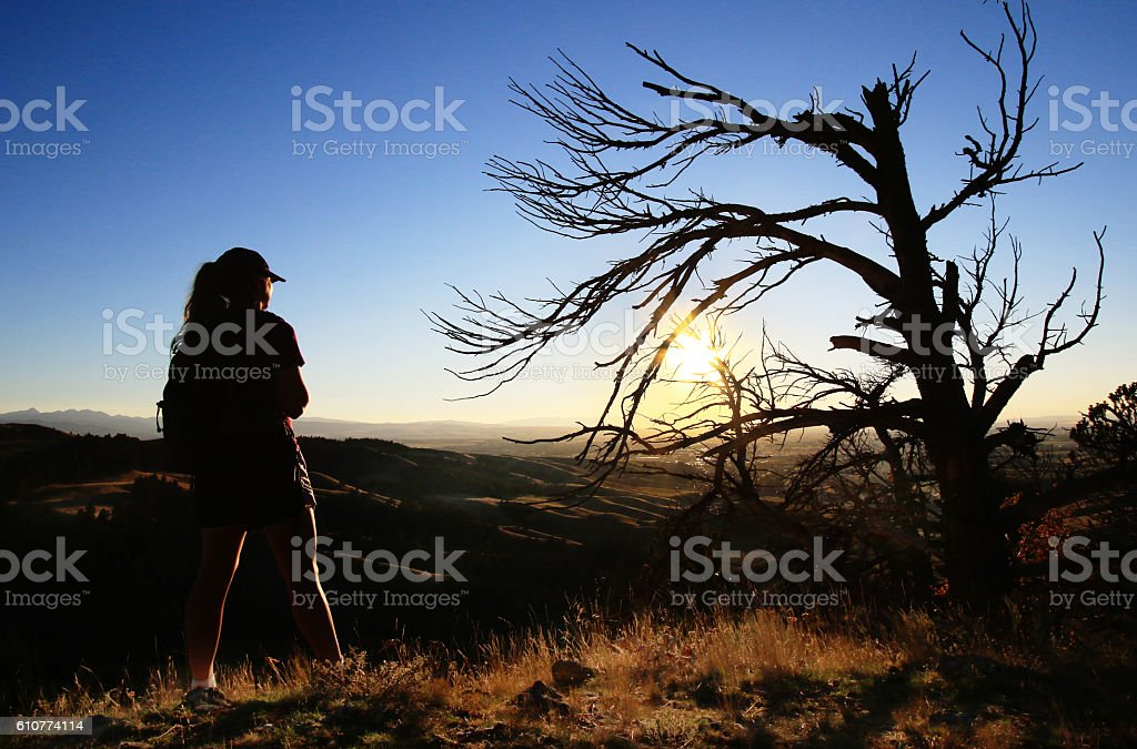 Silhouetted Female Hiker and Gnarled Tree stock photo