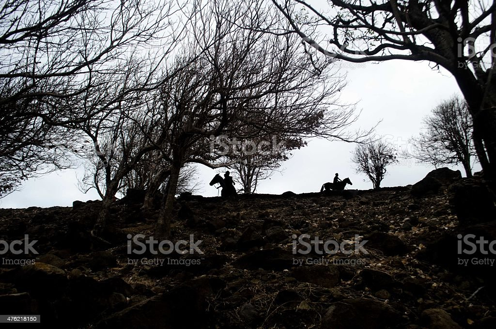 silhouetted horseback riders in dry forest among trees stock photo