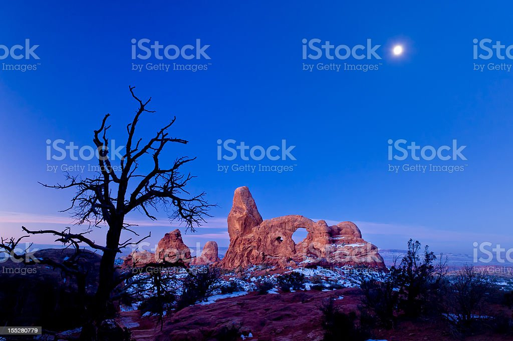 Silhouetted Tree at Turret Arch Landscape with Moon stock photo