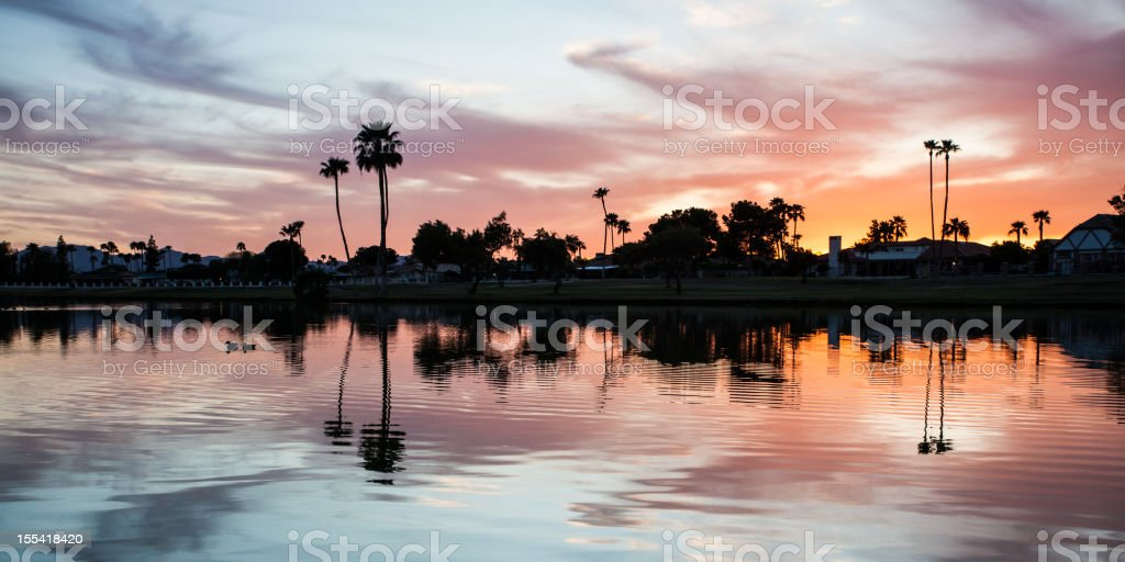 Silhouetted trees reflecting in lake royalty-free stock photo