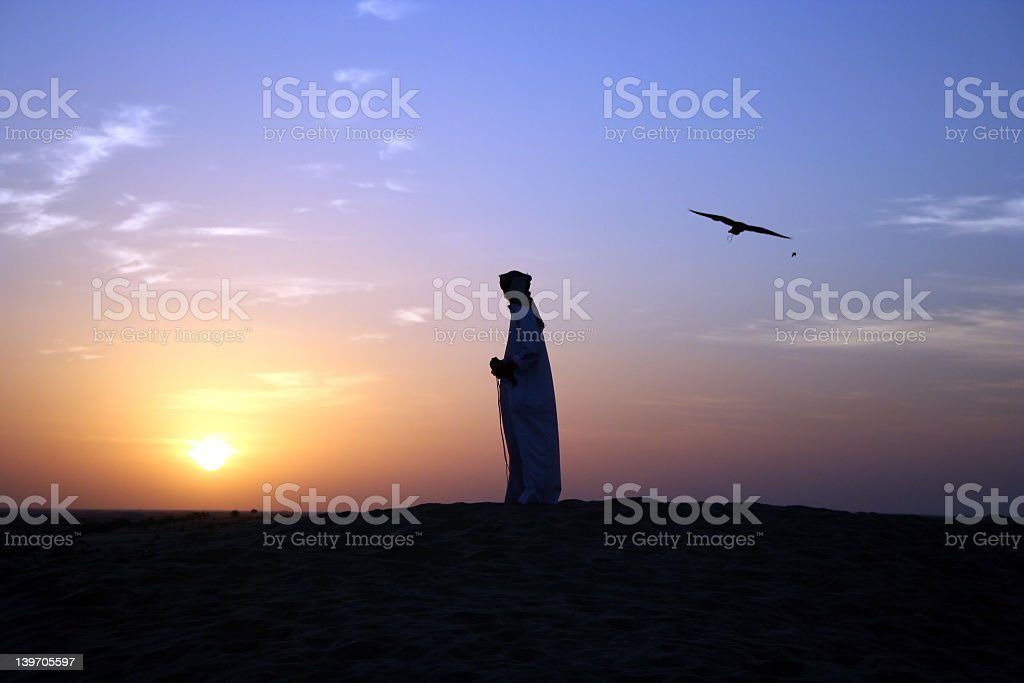 Silhouettes of an Arabian man and a bird at sunset stock photo