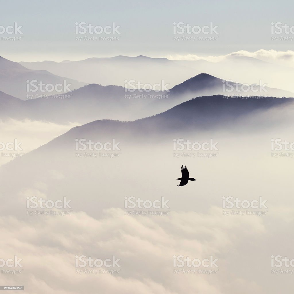 Silhouettes of mountains in the mist and bird flying stock photo
