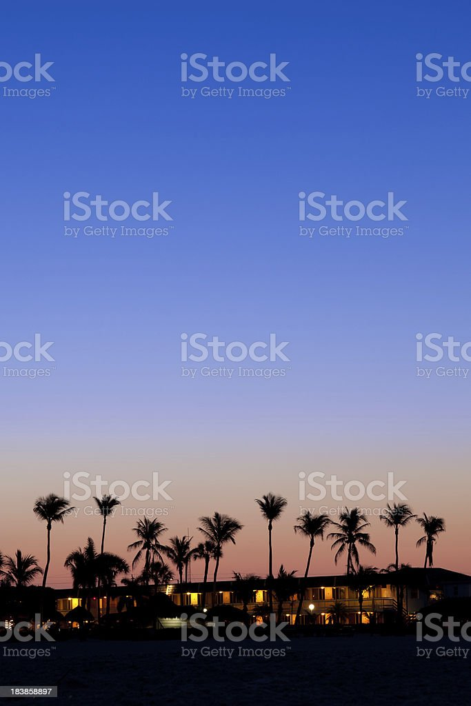 Silhouettes of palm tree royalty-free stock photo