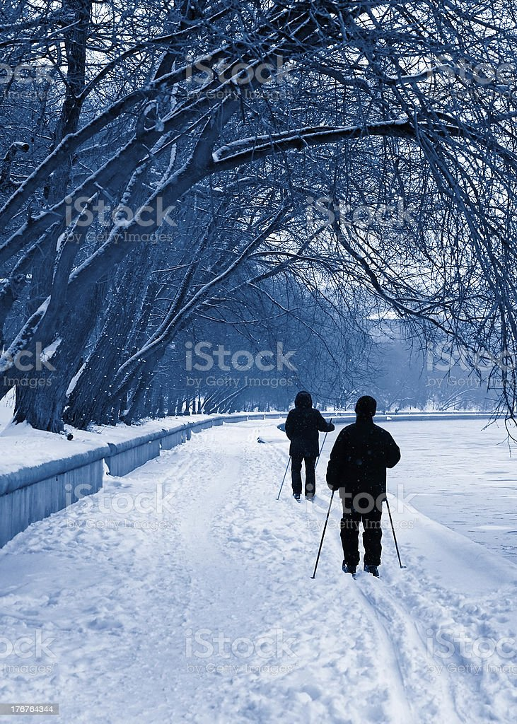 Silhouettes of skiers in a snowfall royalty-free stock photo