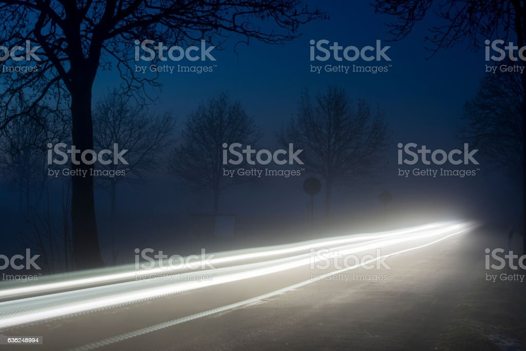 Silhouettes of trees and vehicle light trails at dawn stock photo