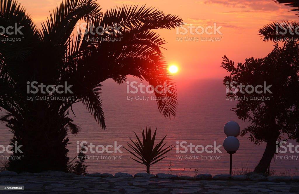 Silhuetas de árvores durante o pôr do sol sobre o mar Mediterrâneo foto de stock royalty-free