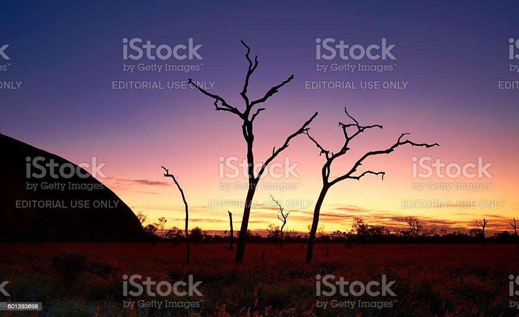 Silhouettes Of Uluru stock photo