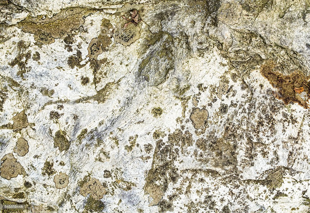 Silicide-Rock resident, sedimented. royalty-free stock photo