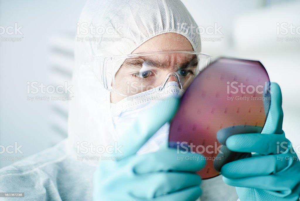 Silicon Wafer stock photo
