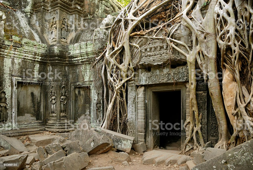 Silk Cotton Tree roots on Ta Prohm Temple, Angkor, Cambodia stock photo