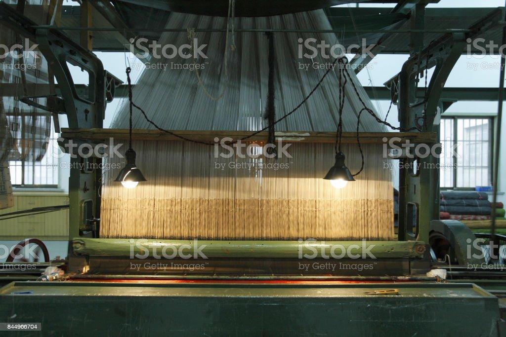 Silk plant stock photo