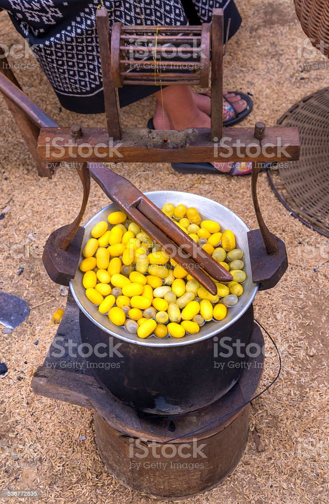 Silk Production Process, making of the cocoon silkworm from egg stock photo