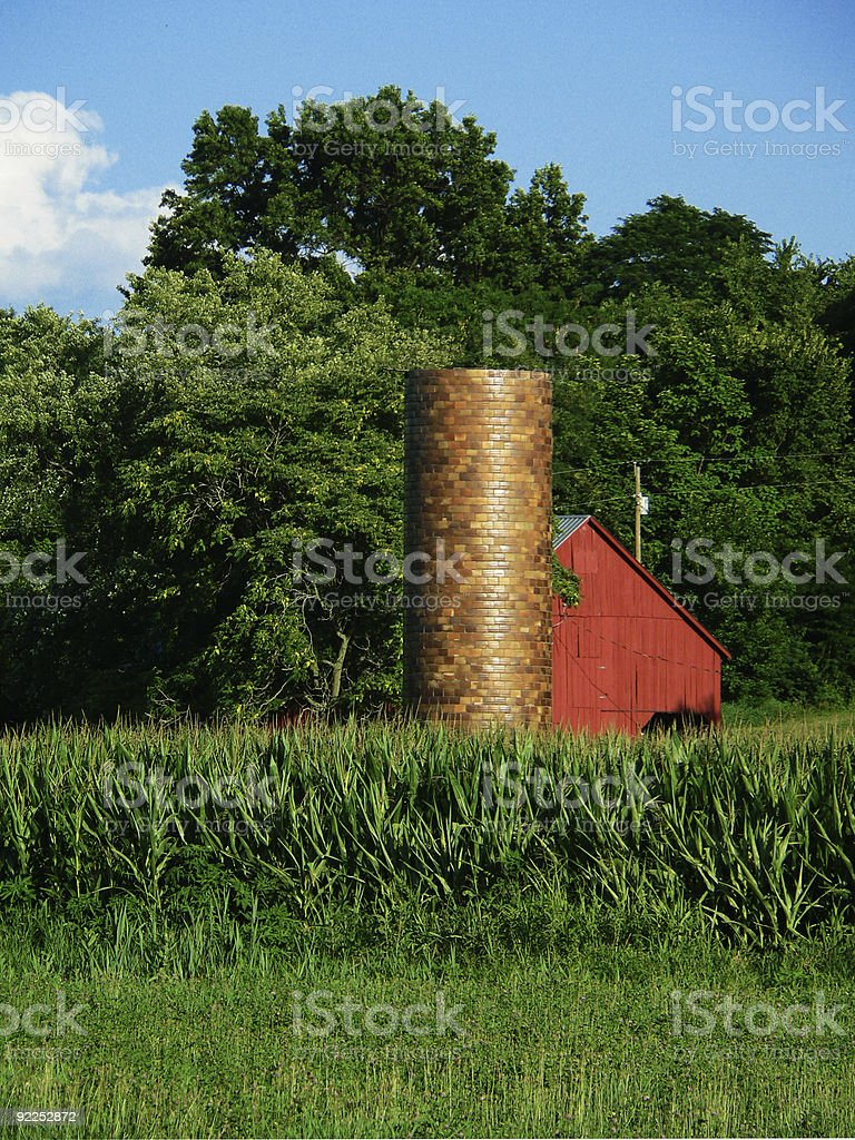 Silo and Red Barn by cornfield stock photo
