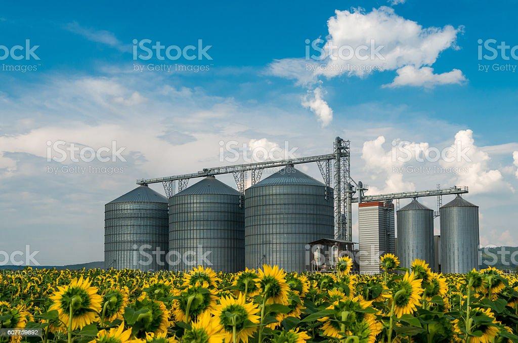 Silos for storing grain. stock photo
