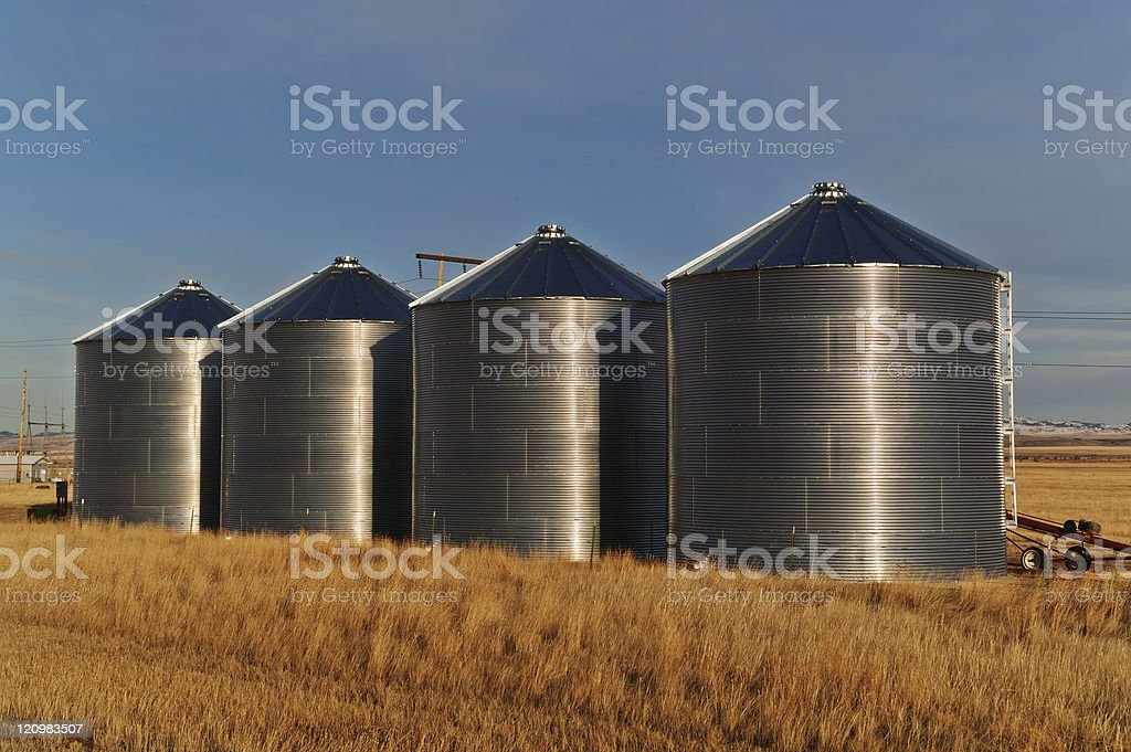 Silos in a field stock photo