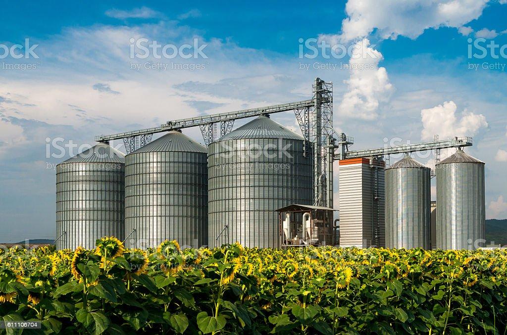Silos. Warehouse for storing grain. stock photo