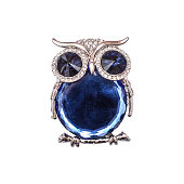silver brooch owl isolated on white