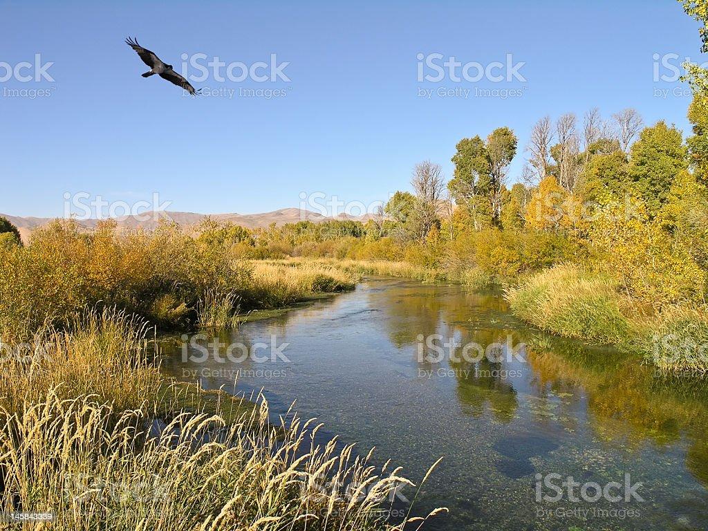 Silver Creek, Idaho royalty-free stock photo