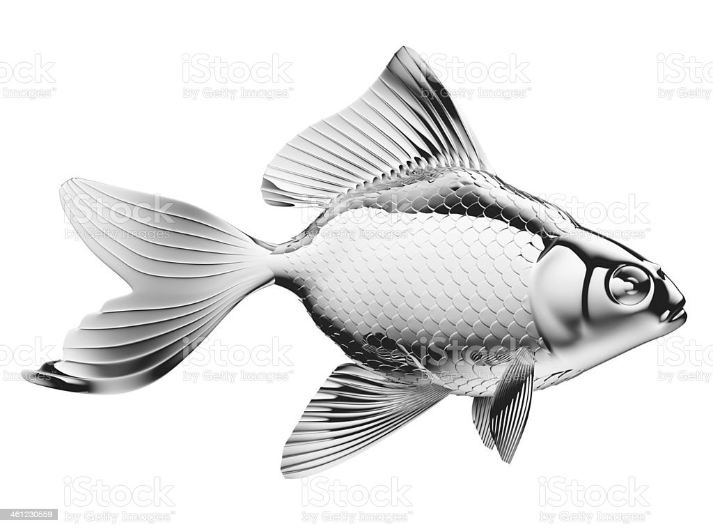 Silver fish with fins and scales isolated royalty-free stock photo