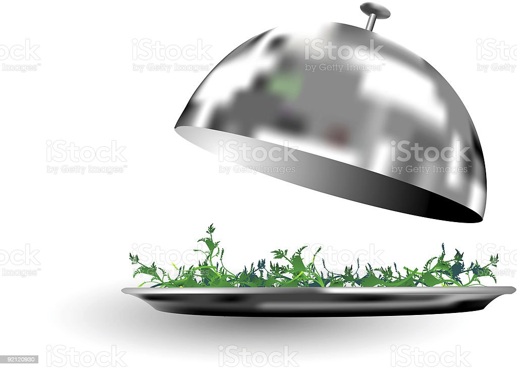 Silver food serving tray with dome royalty-free stock photo