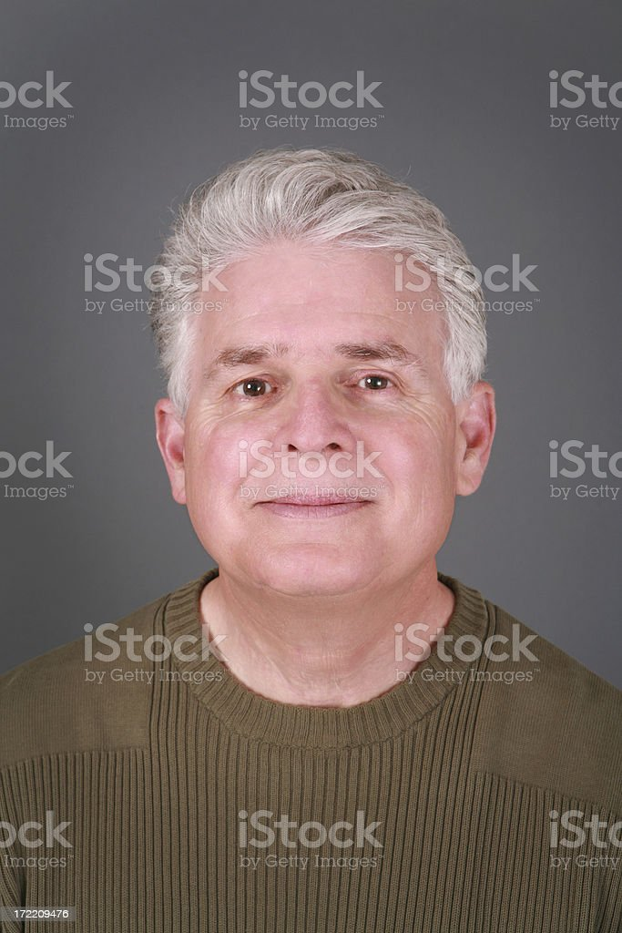 Silver Fox royalty-free stock photo