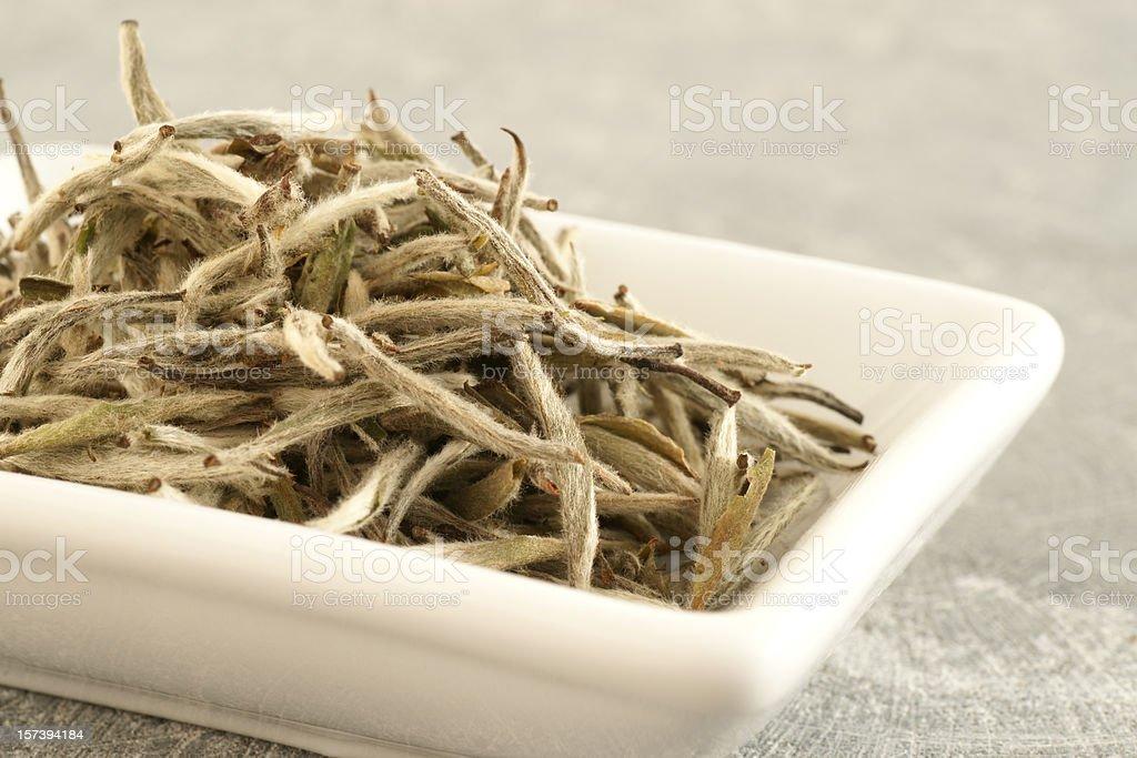 Silver Needles White Tea stock photo