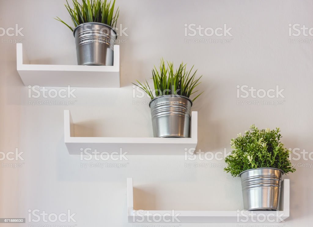 Silver potted plants on white wall stock photo