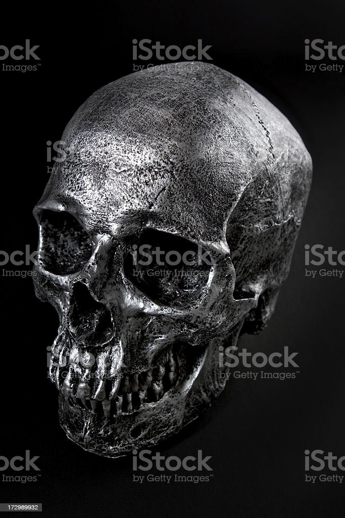 Silver Skull stock photo