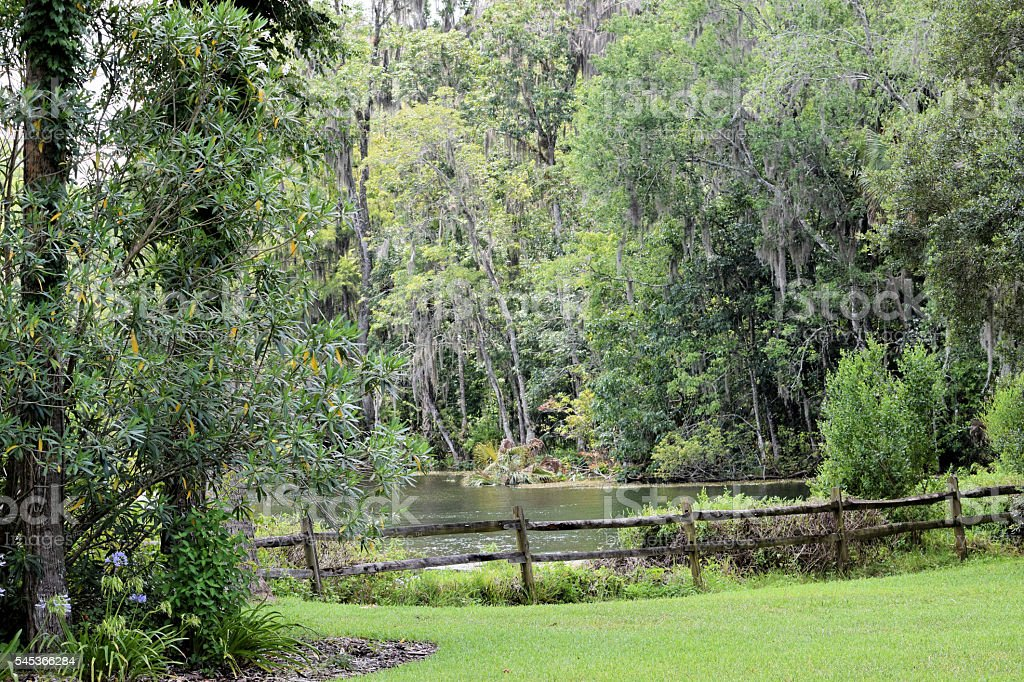 Silver Springs, Florida stock photo