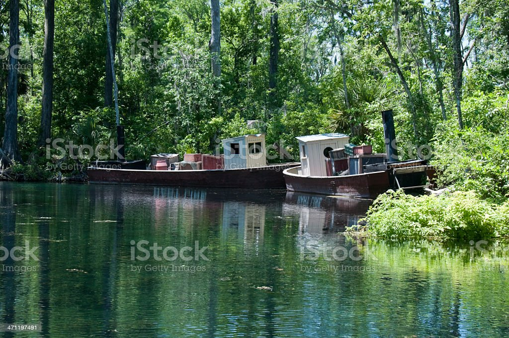 Silver Springs River stock photo